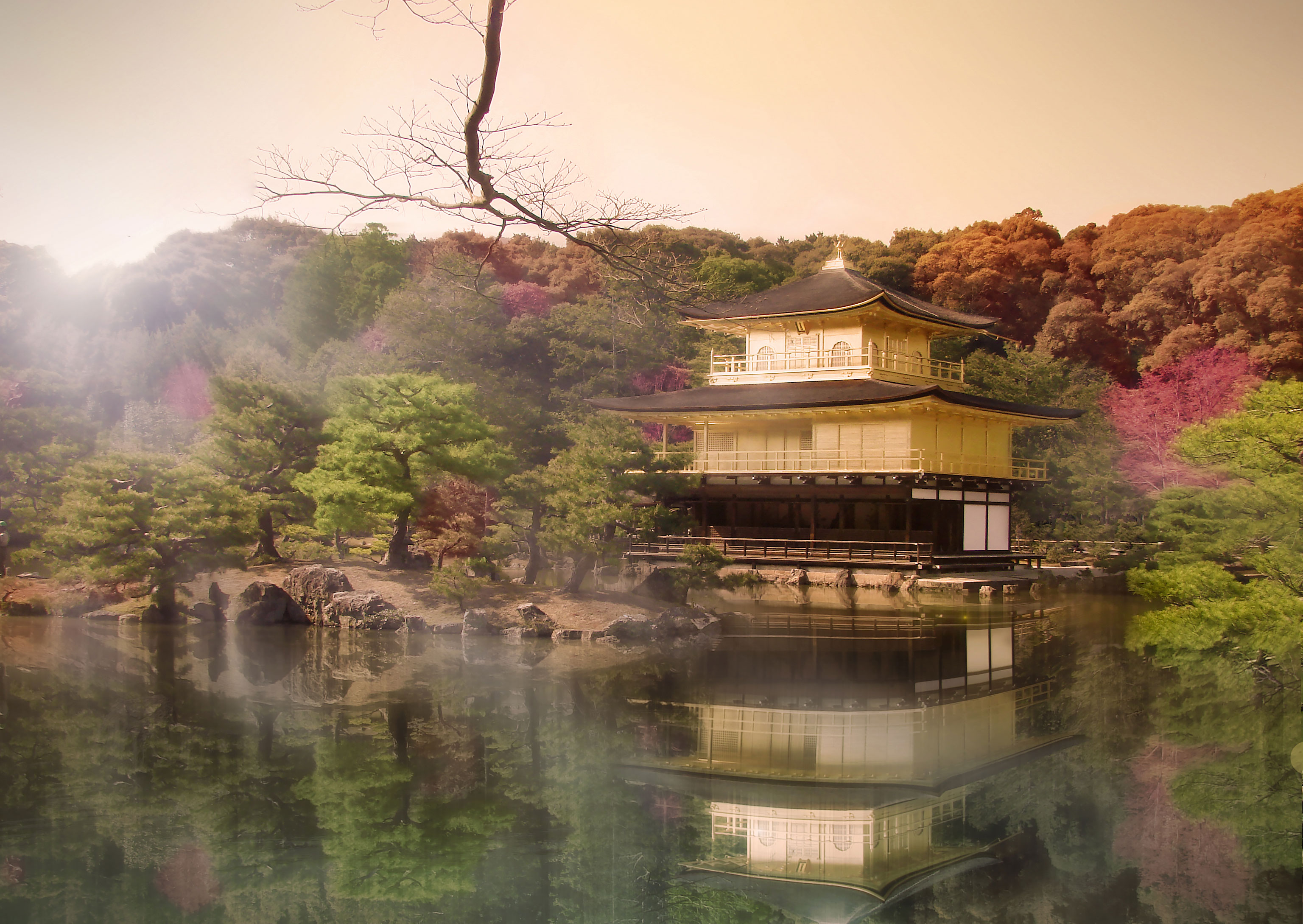 The Golden Pavilion of Kyoto or the Deer Garden Temple of Kyoto by sunset and nice color of the nature around, (Nos Dren)