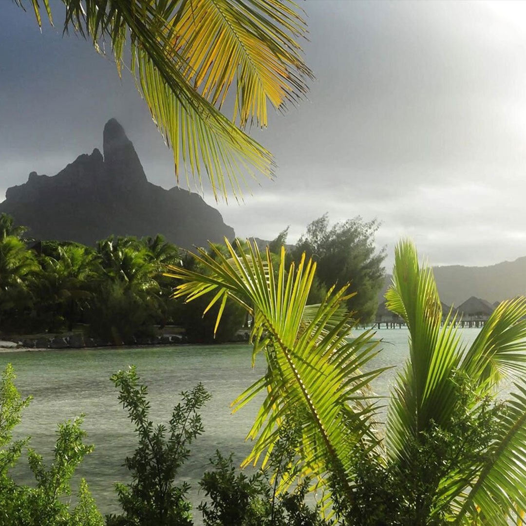 French Polynesia, Bora Bora island, mount Otemanu in the mist took from the other side of the atoll with green palm trees all around and a nice backlight. (Nos Dren)