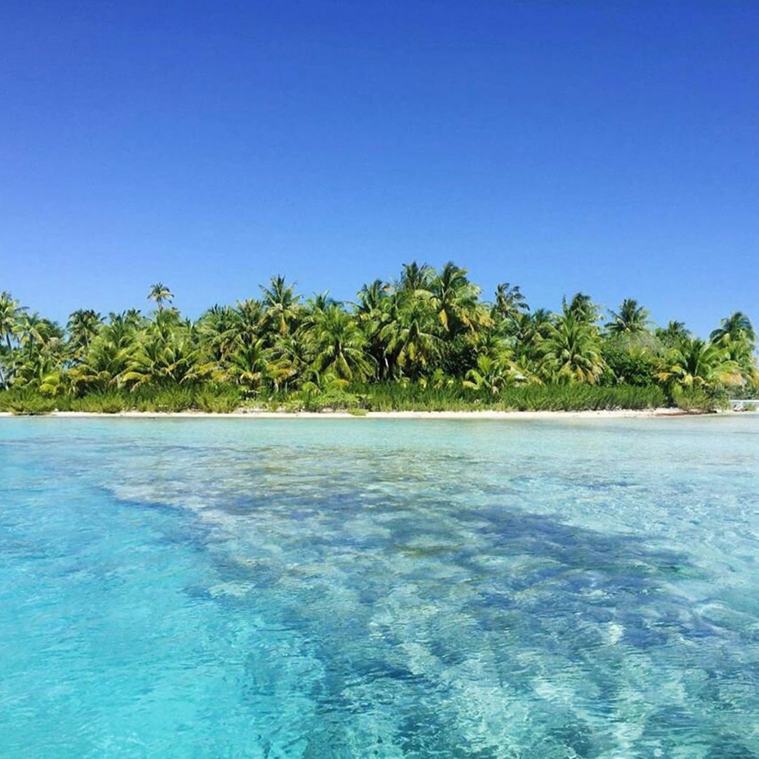 French Polynesia, Bora Bora island, wild desert island in the middle of the Pacific Ocean, crystal blue water and many palm trees. (Nos Dren)